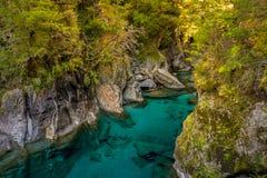 Μπλε λίμνες, Νέα Ζηλανδία Στοκ φωτογραφίες με δικαίωμα ελεύθερης χρήσης