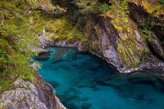 Μπλε λίμνες, Νέα Ζηλανδία Στοκ Εικόνα