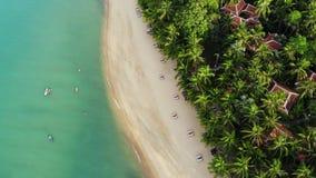 Μπλε λιμνοθάλασσα και αμμώδης παραλία με τους φοίνικες Εναέρια άποψη των μπλε κρεβατιών λιμνοθαλασσών και ήλιων στην αμμώδη παραλ απόθεμα βίντεο
