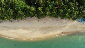 Μπλε λιμνοθάλασσα και αμμώδης παραλία με τους φοίνικες Εναέρια άποψη των μπλε κρεβατιών λιμνοθαλασσών και ήλιων στην αμμώδη παραλ φιλμ μικρού μήκους