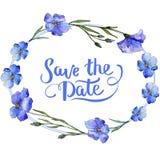 μπλε λινάρι Floral βοτανικό λουλούδι Τετράγωνο διακοσμήσεων συνόρων πλαισίων Στοκ Εικόνες