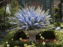 Μπλε λουλούδια στο θόλο λουλουδιών Στοκ φωτογραφία με δικαίωμα ελεύθερης χρήσης