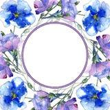 Μπλε λουλούδι λιναριού Floral βοτανικό λουλούδι Τετράγωνο διακοσμήσεων συνόρων πλαισίων Στοκ φωτογραφία με δικαίωμα ελεύθερης χρήσης