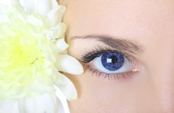 μπλε μάτι Στοκ φωτογραφίες με δικαίωμα ελεύθερης χρήσης