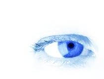 μπλε μάτι στοκ φωτογραφίες