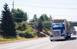 Μπλε μεγάλο ημι φορτηγό εγκαταστάσεων γεώτρησης το ημι ρυμουλκό που φορτώνεται με με το σανό runnin Στοκ Εικόνες