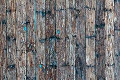 μπλε μικρά κτυπήματα φλοιών ανασκόπησης Στοκ Φωτογραφία