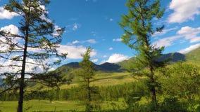 Μπλε νεφελώδης ουρανός στα βουνά Altai απόθεμα βίντεο