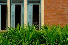 μπλε ξύλινο louver παράθυρο & πορτοκαλής τουβλότοιχος κοντά στον κήπο στοκ φωτογραφία