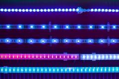 Μπλε οδηγημένες ελαφριές ταινίες στοκ εικόνα