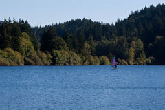 μπλε οριζόντια λίμνη windsurfer Στοκ Εικόνα
