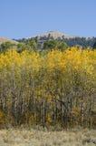 μπλε ουρανός βουνοπλα&gam στοκ εικόνα με δικαίωμα ελεύθερης χρήσης