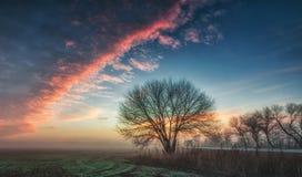 μπλε ουρανός κάτω στοκ εικόνες με δικαίωμα ελεύθερης χρήσης