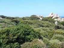 Μπλε ουρανός και καταπληκτική θάλασσα, βράχοι γρανίτη με τη μεσογειακή βλάστηση, κοιλάδα φεγγαριών, Valle della Luna, Capo Testa, Στοκ εικόνα με δικαίωμα ελεύθερης χρήσης