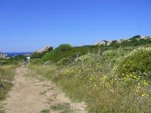 Μπλε ουρανός και καταπληκτική θάλασσα, βράχοι γρανίτη με τη μεσογειακή βλάστηση, κοιλάδα φεγγαριών, Valle della Luna, Capo Testa, Στοκ Εικόνα