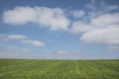 Μπλε ουρανός, πράσινη χλόη, άσπρα σύννεφα στοκ φωτογραφίες