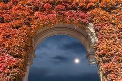 μπλε ουρανός φεγγαριών Στοκ εικόνα με δικαίωμα ελεύθερης χρήσης