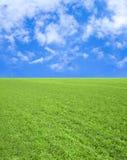 μπλε ουρανός χλόης πεδίων Στοκ Εικόνα