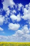 μπλε ουρανός Στοκ Εικόνες