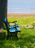 μπλε πάγκων Στοκ Εικόνα