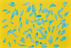 Μπλε πέταλα λουλουδιών στο κίτρινο υπόβαθρο Στοκ φωτογραφία με δικαίωμα ελεύθερης χρήσης