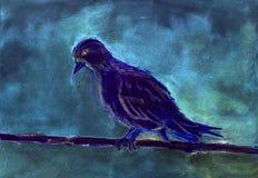 Μπλε περιστέρι στην αυγή απεικόνιση αποθεμάτων