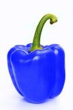 μπλε πιπέρι Στοκ φωτογραφία με δικαίωμα ελεύθερης χρήσης
