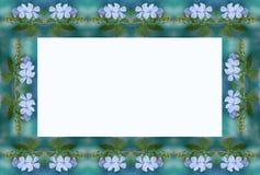 Μπλε πλαίσιο λουλουδιών Στοκ Εικόνα