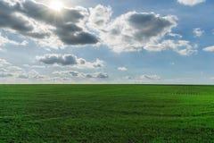 μπλε πράσινος ουρανός πεδίων Στοκ φωτογραφία με δικαίωμα ελεύθερης χρήσης