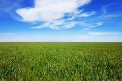 μπλε πράσινος ουρανός πε&d Στοκ εικόνες με δικαίωμα ελεύθερης χρήσης