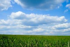 μπλε πράσινος ουρανός πε&d Στοκ φωτογραφία με δικαίωμα ελεύθερης χρήσης