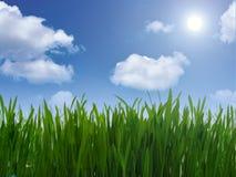 μπλε πράσινος ουρανός χλόης Στοκ εικόνα με δικαίωμα ελεύθερης χρήσης