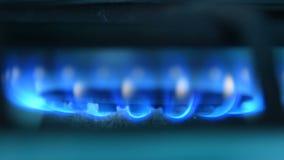 Μπλε πυρκαγιά της σόμπας αερίου απόθεμα βίντεο