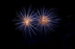 μπλε πυροτεχνήματα μεταξύ των σκιαγραφιών δέντρων Στοκ Εικόνα