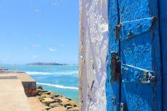 Μπλε πόρτα και seagull από το magador στο Μαρόκο Στοκ Εικόνα
