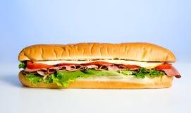 μπλε σάντουιτς Στοκ εικόνα με δικαίωμα ελεύθερης χρήσης