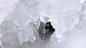 Μπλε σκηνικό Δασικός χειμερινός κολπίσκος Πάγος-καλυμμένος καταρράκτης Ρεύμα κολπίσκου ποταμών χειμερινού mounta στον ποταμό κολπ απόθεμα βίντεο