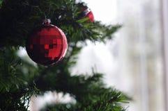 μπλε σκιά διακοσμήσεων απεικόνισης λουλουδιών Χριστουγέννων στοκ εικόνες