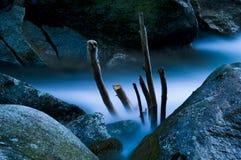 μπλε στιγμές Στοκ Εικόνα