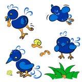 μπλε σύνολο πουλιών απεικόνιση αποθεμάτων