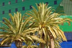 μπλε της Angeles που χτίζει το&upsilo Στοκ Εικόνες