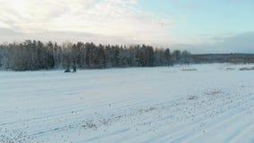 Μπλε τρακτέρ με το σώμα ρυμουλκών, το οποίο λιπαίνει το χώμα με το αλεύρι δολομίτη το χειμώνα για να αυξήσει την παραγωγή φιλμ μικρού μήκους