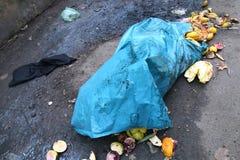 Μπλε τσάντες απορριμάτων στην οδική πλευρά σε υπαίθριο, απορρίματα, απορρίμματα, απόβλητα Στοκ φωτογραφίες με δικαίωμα ελεύθερης χρήσης