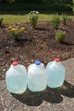 μπλε υγρό φυτό λιπάσματος Στοκ εικόνες με δικαίωμα ελεύθερης χρήσης