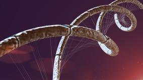 Μπλε υπόβαθρο γραμμών DNA μπλε διανυσματική απεικόνιση