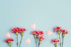 Μπλε υπόβαθρο με το διάστημα λουλουδιών και αντιγράφων γαρίφαλων Τοπ όψη Στοκ εικόνες με δικαίωμα ελεύθερης χρήσης