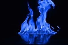 Μπλε φλόγες της πυρκαγιάς ως περίληψη backgorund Στοκ εικόνες με δικαίωμα ελεύθερης χρήσης