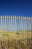 μπλε φραγές στοκ εικόνα με δικαίωμα ελεύθερης χρήσης