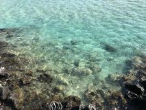 μπλε Χαβάη Στοκ Φωτογραφία