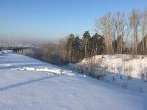 μπλε χειμώνας κύκνων ονείρου ανασκόπησης frostwork στοκ εικόνα